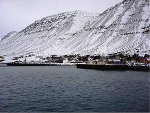 http://trabajarencas.blogspot.com.es/2013/03/ingredientes-islandeses.html